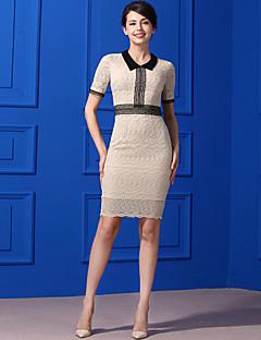 Kadın Günlük/Sade Sade Kılıf Elbise Solid,Kısa Kollu Gömlek Yaka Diz-boyu Dantelalar Yaz Normal Bel Esnemez Orta