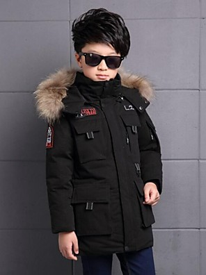 Boy's Casual/Daily Print Down & Cotton PaddedPolyester Winter Black / Green / Red
