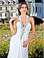 Lanting Bride® Tube / kolonne Petit / Plus Størrelser Brudekjole - Klassisk og tidsløs / Glamourøs og dramatisk Glitre & Skinne / Åben Ryg