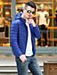 Langærmet Ensfarvet Mænds Normal Dynejakke Frakke Polyester