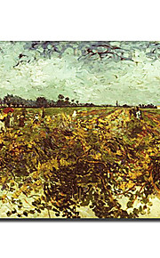 Hand-painted Famous Oil Painting with Stretched Frame by Van Gogh