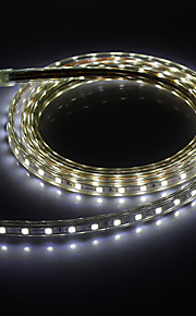 2M 20W 1400LM 6000K 5050SMD Cool White LED Light Strip (220V)