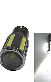Fendinebbia/Fari da giorno/Luce retromarcia - Auto/SUV - LED - Alto rendimento - 6000K
