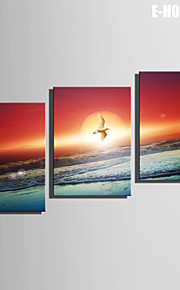 E-Home® Leinwand Kunst Vögel, die durch das Meer Dekoration Malerei Set von 3 Fliegen