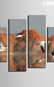 E-HOME® Stretched Canvas Art The Flying Geese on The Lake Decoration Painting  Set of 4