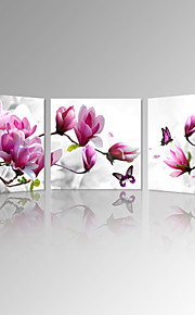 VISUAL STAR®Magnolia Blossom Stretched Canvas Prints Beautiful Flowers Picture Art Prints Modern Home Decoration