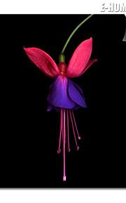 e-home® magnetisk utskrifts utskiftbare kunst blomster dekormaling multi stil valg