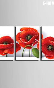 Botanisk Lerret Print Tre Paneler Klar til å henge , Lodrett