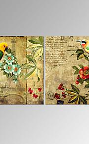 Stilleven / Fantasie / Botanisch / Romantisch Canvas Afdrukken Twee panelen Klaar te hangen , Vierkant