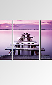 VISUAL STAR®Lavender Color Canvas Wall Art for Home Decoration Calm Scenery Art Print Ready to Hang