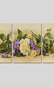 Landskap / Botanisk / Moderne Lerret Print Tre Paneler Klar til å henge,Kvadrat
