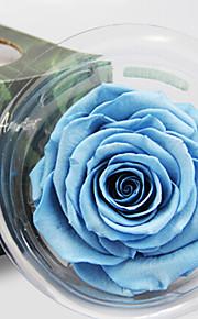 Others / Недвижимость сенсорный Розы Искусственные Цветы