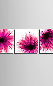 E-HOME® Stretched Canvas Art Purple Flowers Decoration Painting  Set of 3