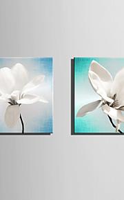 Botanisch Leinwand drucken zwei Panele Fertig zum Aufhängen,Quadratisch
