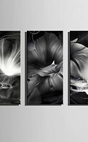Kasvitiede / Fantasy Canvas Tulosta 3 paneeli Valmis Hang,Pysty