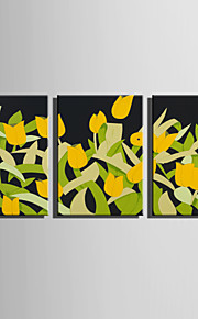E-HOME Stretched Canvas Art Abstract The Elegant Tulips Decoration Painting Set Of 3