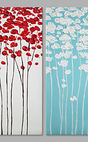 IARTS® Hand Painted Abstract Red & Blue Flower Floral Oil Painting Set of 2 with Stretched Frame Picture For Home Decoration Ready To Hang