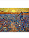 Hand-painted Oil Painting The Sower,c.1888 by Vincent Van Gogh with Stretched Frame