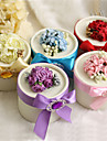 Round Favor Boxes With Flower And Ribbon - Set of 12 (More Colors)