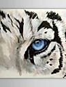 Peint a la main Animal Un Panneau Toile Peinture a l\'huile Hang-peint For Decoration d\'interieur