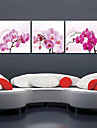 Reproduction transferee sur toile Art Floral Orchid Ensemble de 3