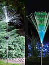 Lot de 2 solaire lumiere a fibre optique Fountain Garden Stake (Cis-57185)