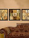 A fleurs/Botanique Toile Encadree / Set de Cadres Wall Art,PVC Noir Sans Passepartout Avec Cadre Wall Art