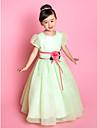 A-line/Princess Floor-length Flower Girl Dress - Organza Short Sleeve