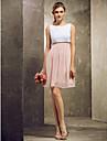 Short/Mini Chiffon Bridesmaid Dress - Multi-color Plus Sizes / Petite A-line Bateau