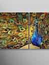 HANDMÅLAD Djur Två paneler Kanvas Hang målad oljemålning For Hem-dekoration