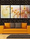 pânză întinse ești floarea de prun deschis în setul decorare luna de 3