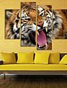 sträckt duk tiger dekoration set av 4