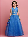 Ball Gown V-neck Floor-length Tulle Flower Girl Dress (2174407)