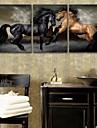 e-Home® sträckta canvas konsthäst dekoration målning uppsättning av 3