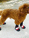 Dog Socks & Boots Red Shoes / Black / Blue / Rose Winter Waterproof-Doglemi