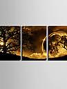 e-FOYER toile tendue art crepuscule sous l\'arbre decoratif ensemble de trois de peinture