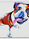 Peint a la main AnimalModern / Style europeen Un Panneau Toile Peinture a l\'huile Hang-peint For Decoration d\'interieur