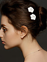 Women\'s Alloy Headpiece-Wedding / Special Occasion Hair Pin 2 Pieces
