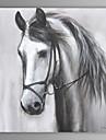 oljemålning modern abstrakt häst handen målade med sträckt ram
