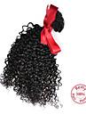 evet lockigt hår kinky jungfru förlängningar malaysiska hår väver bunt kinky lockigt hår naturliga färg 1st 100g / st