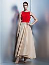 A-linje Dyp utringing - Firmafest Dress - Multi-farge Ankellang Taft