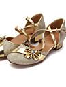 Women\'s / Kids\' Dance Shoes Ballet / Latin / Modern / Swing Shoes / Samba Leather Chunky Heel Silver / Gold