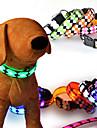 Katter / Hundar Dekorativa Halsband Röd / Vit / Grön / Blå / Rosa / Gul / Orange Hundkläder Vinter / Sommar / Vår/Höst Enfärgat Mode / LED