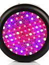 Lampes Horticoles LED 3500 lm Blanc Froid / Rouge / Bleu / UV (Lumiere Noire) LED Haute Puissance AC 85-265 V 1 pieces