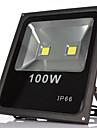 2leds 100W varm / kall vita LED strålkastare IP65 vattentät utomhus ljus vägglampa projekt för trädgård ledde strålkastare (ac85-265v)