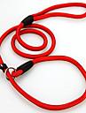 Hundar Koppel Justerbara/Infällbar Solid Röd Svart Blå Nylon