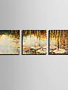 Peisaj Floral/Botanic Modern,Trei Panouri Canava Pătrat print Arta Decor de perete For Pagina de decorare