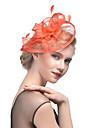 Pană Tul Diadema-Nuntă Ocazie specială Pălărioare 1 Bucată