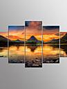 Imprimeu pânză întinsCinci Panouri Orizontal Imprimeu Decor de perete For Pagina de decorare
