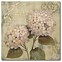 Tištěné plátno Petals umění Klasická II od Lisa Audit s Reprodukce Rám